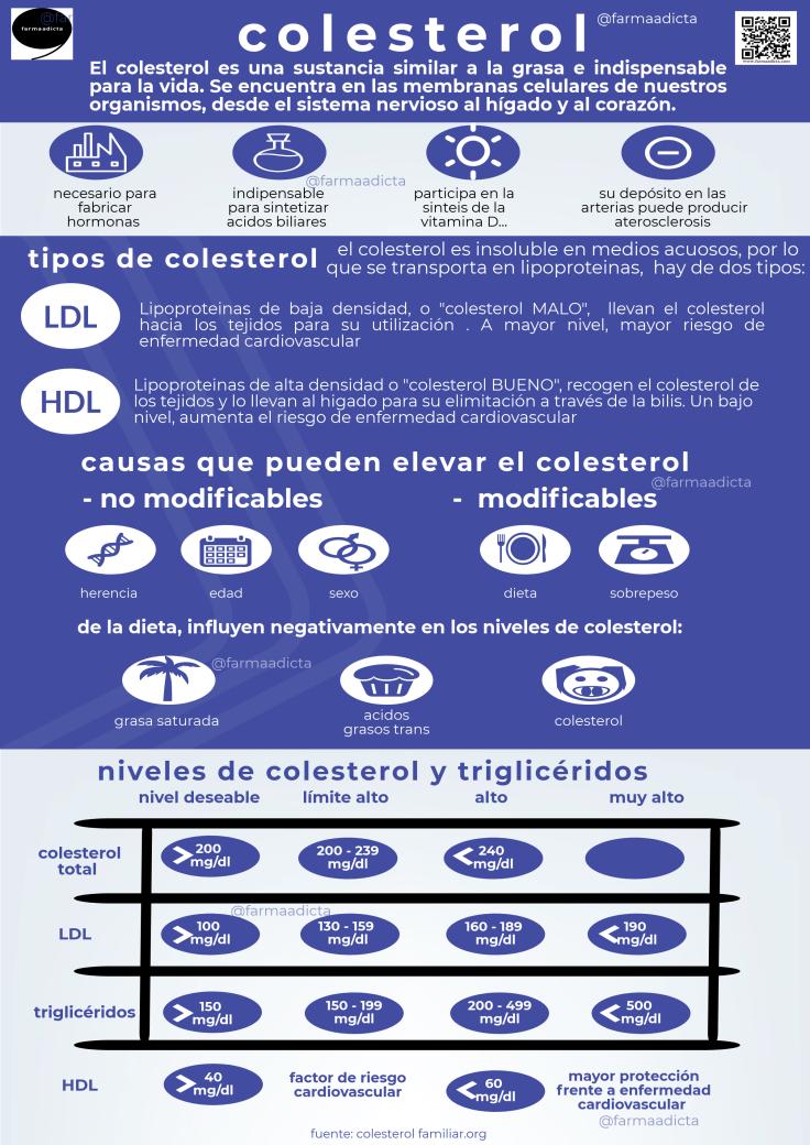 el-colesterol_26302250-2